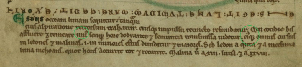 bottom-walters-f8v